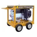 Generator Benza benzina cu rezervor standard WGTS 300 DC-10