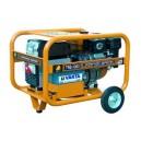 Generator Benza cu rezervor standard TRS4300